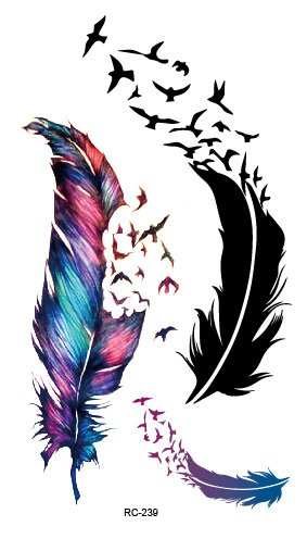 FEATHER BIRDS